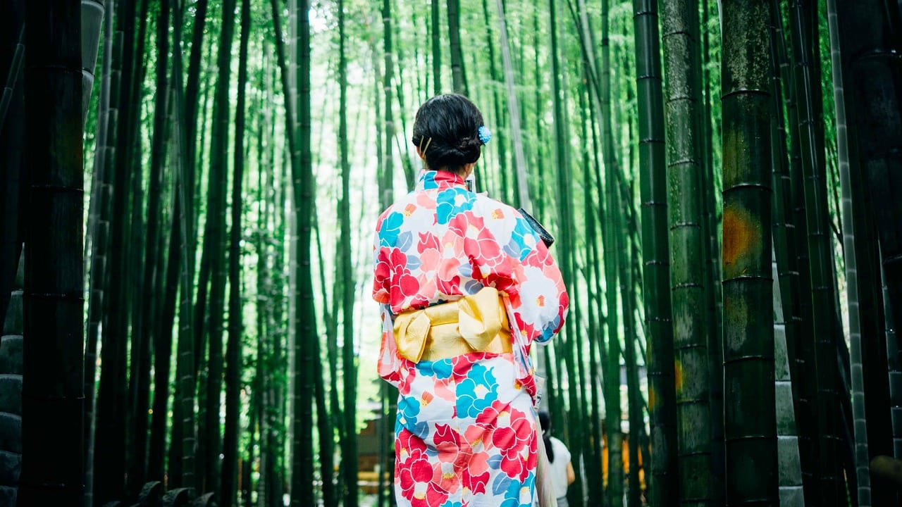 Bamboo Trees Kimono Kyoto Japan