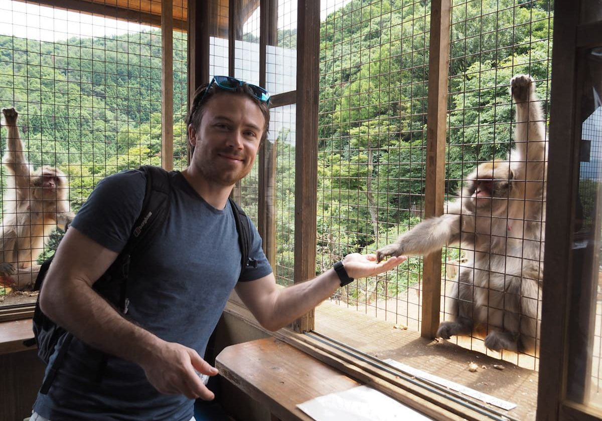 Monkey Forest - Things to do in Kyoto, Japan